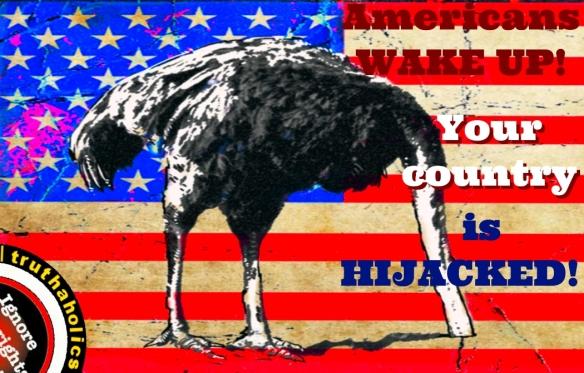 American OstrichC