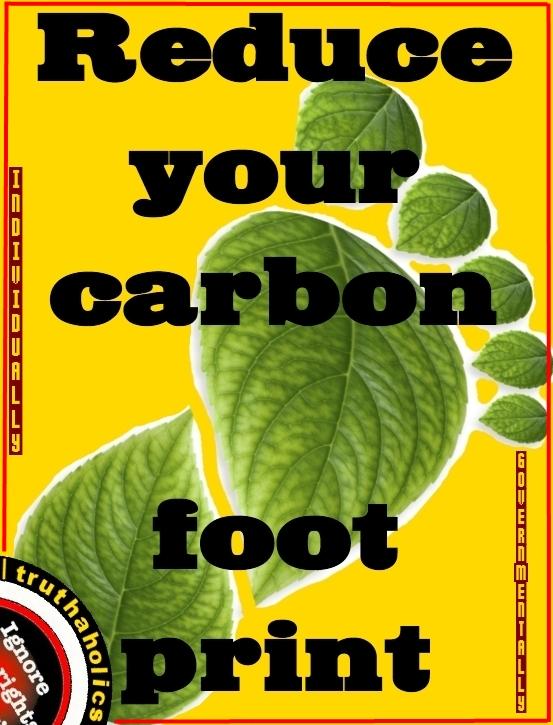 CarbonFootprintC