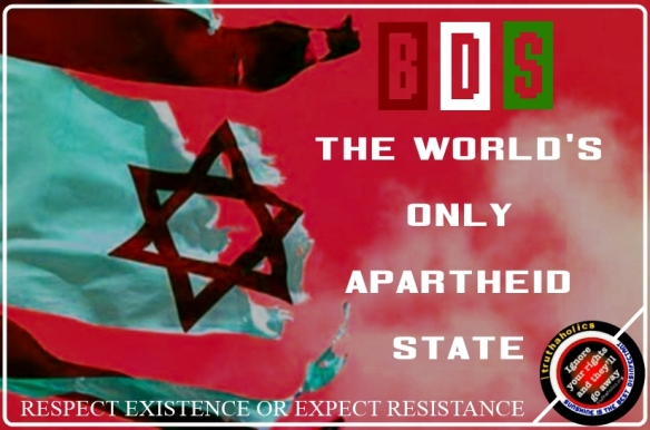 BDS ZIO FLAG