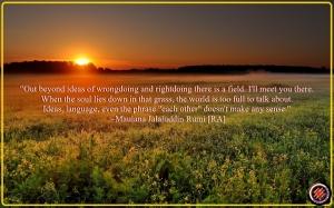 Rumi Sunset-from-the-wild-field